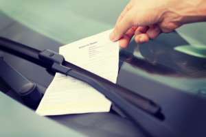 taking a ticket to court